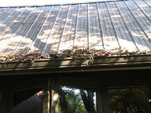 Keep your gutters free of debris so rainwater drains properly.