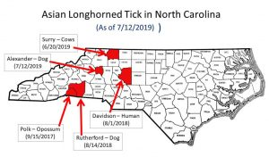 Distribution of Asian longhorned tick in North Carolina